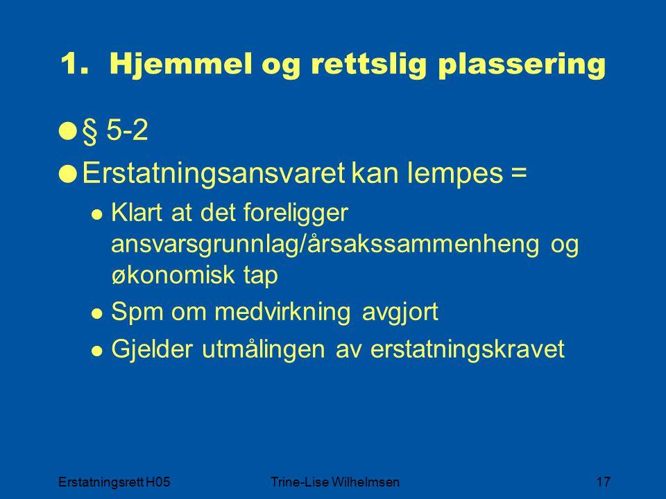 Erstatningsrett H05Trine-Lise Wilhelmsen17 1.