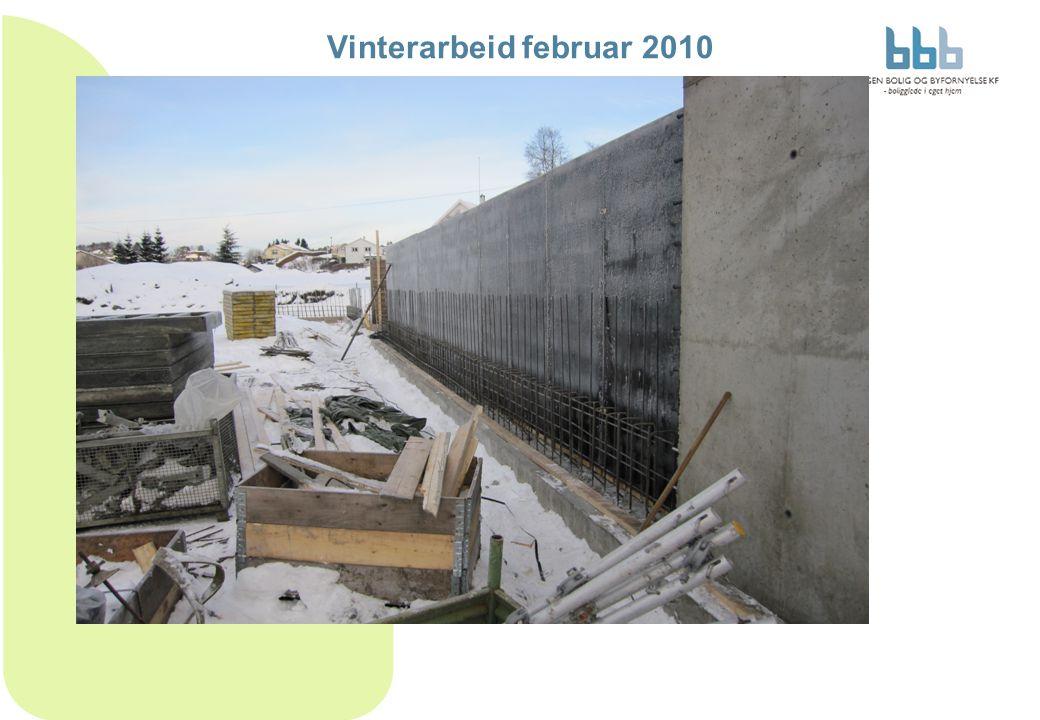 Vinterarbeid februar 2010