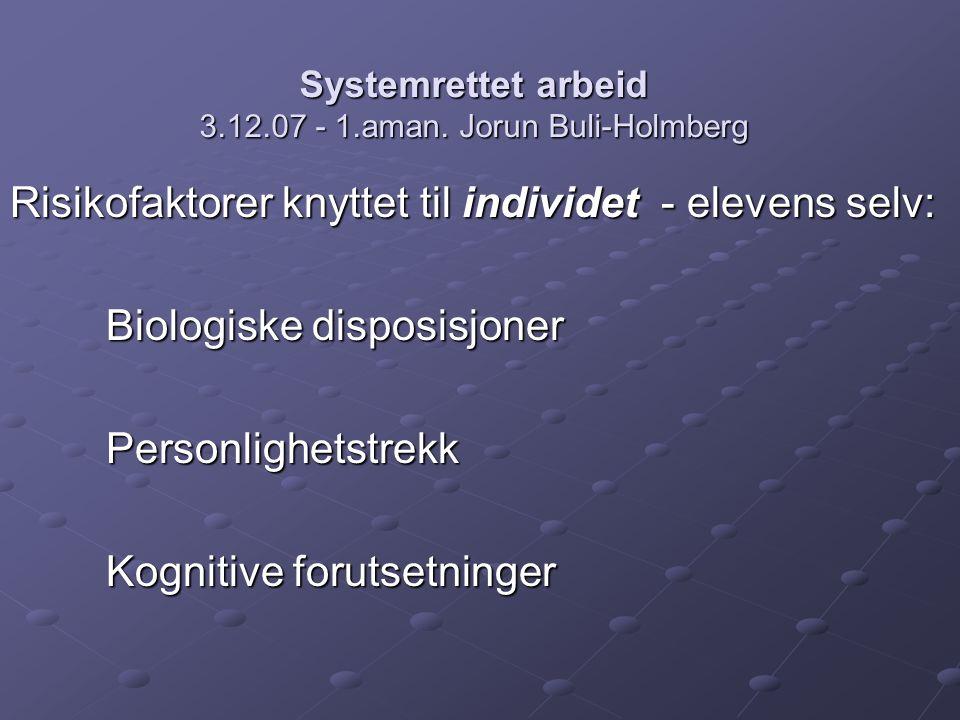 Systemrettet arbeid 3.12.07 - 1.aman.