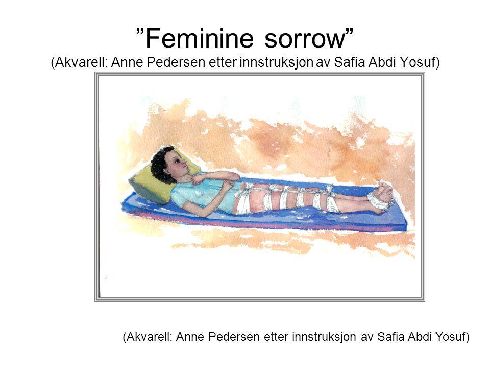 """""""Feminine sorrow"""" (Akvarell: Anne Pedersen etter innstruksjon av Safia Abdi Yosuf) (Akvarell: Anne Pedersen etter innstruksjon av Safia Abdi Yosuf)"""