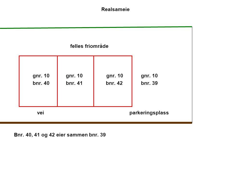 Realsameie felles friområde gnr. 10 gnr. 10gnr. 10 gnr. 10 bnr. 40 bnr. 41 bnr. 42 bnr. 39 veiparkeringsplass Bnr. 40, 41 og 42 eier sammen bnr. 39