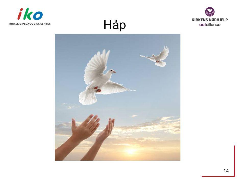 Håp 14