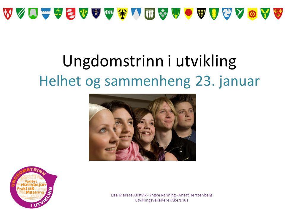 Intensjon med konferansen: Skoleeiere i Akershus ser ulike satsninger i sammenheng for å lykkes med kvalitetsutvikling i skolen.