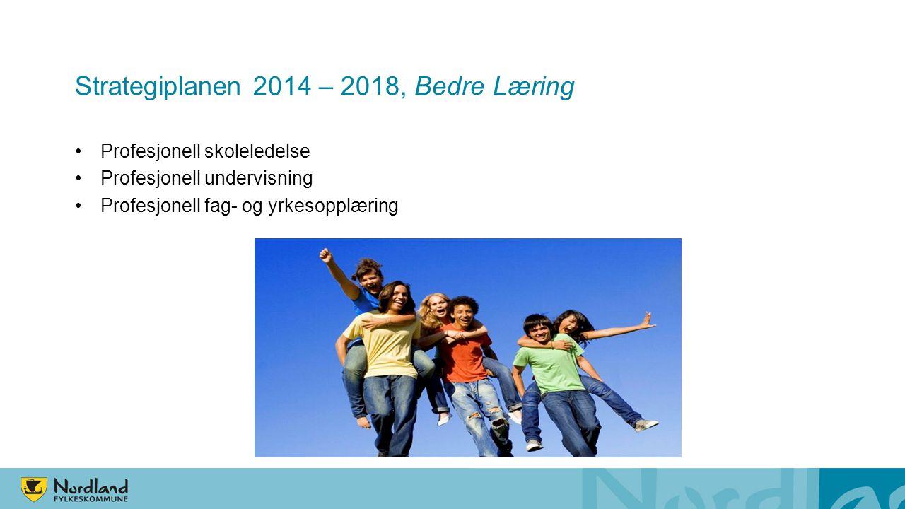 Strategiplanen 2014 – 2018, Bedre Læring Profesjonell skoleledelse Profesjonell undervisning Profesjonell fag- og yrkesopplæring