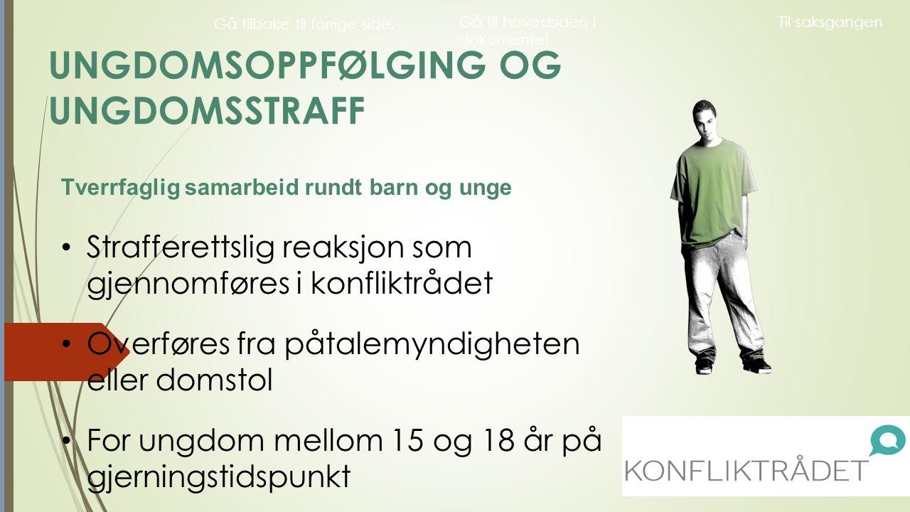 Historikk : Fra Handlingsplan til lovvedtak.