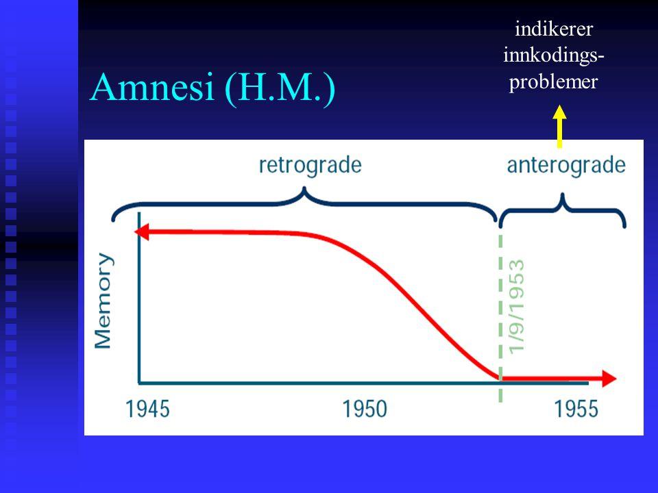 Amnesi (H.M.) indikerer innkodings- problemer