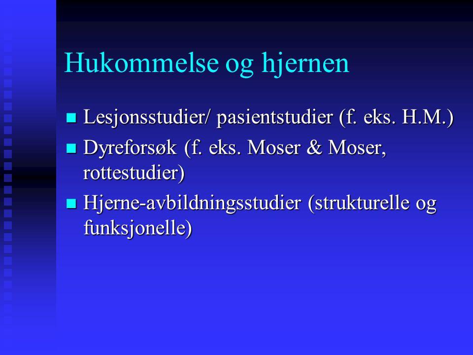 Hukommelse og hjernen Lesjonsstudier/ pasientstudier (f. eks. H.M.) Lesjonsstudier/ pasientstudier (f. eks. H.M.) Dyreforsøk (f. eks. Moser & Moser, r
