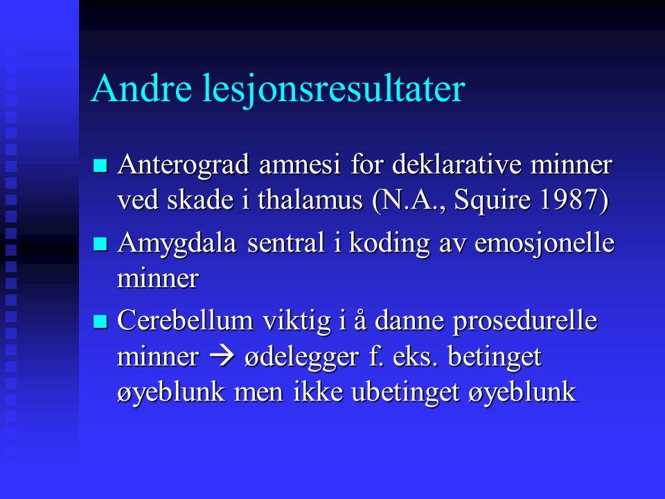 Andre lesjonsresultater Anterograd amnesi for deklarative minner ved skade i thalamus (N.A., Squire 1987) Anterograd amnesi for deklarative minner ved