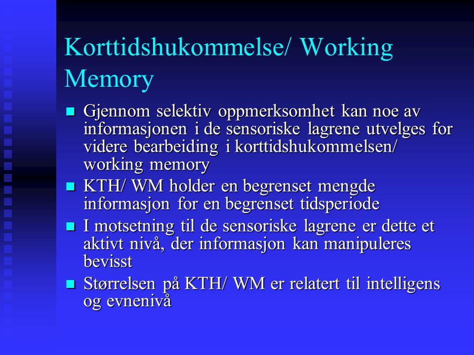 Korttidshukommelse/ Working Memory Gjennom selektiv oppmerksomhet kan noe av informasjonen i de sensoriske lagrene utvelges for videre bearbeiding i k