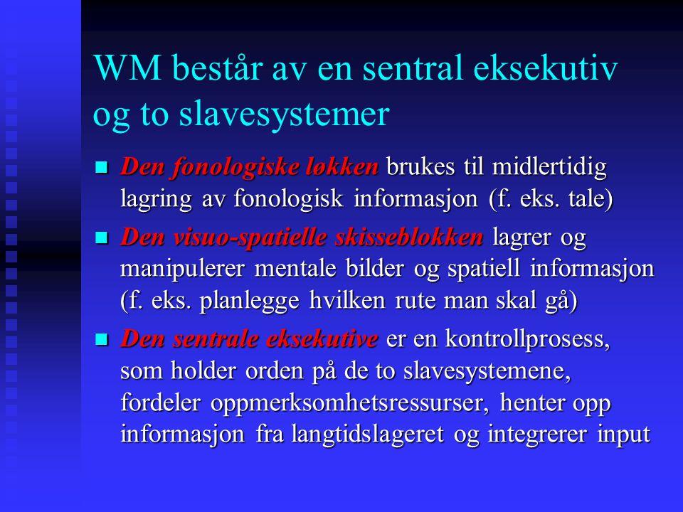 WM består av en sentral eksekutiv og to slavesystemer Den fonologiske løkken brukes til midlertidig lagring av fonologisk informasjon (f. eks. tale) D