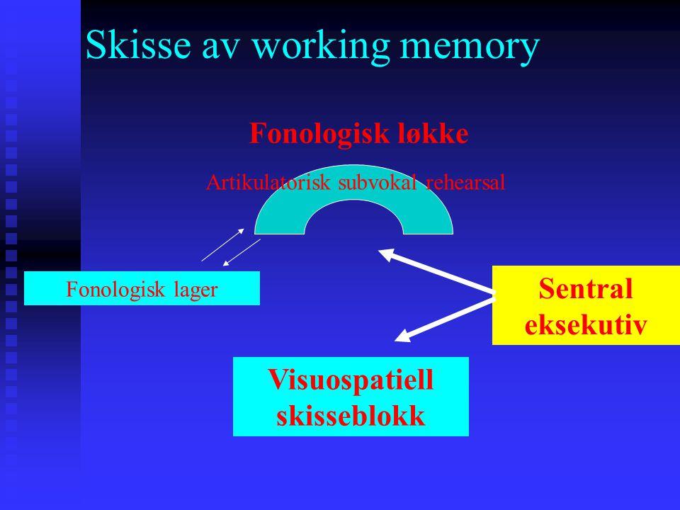Skisse av working memory Visuospatiell skisseblokk Fonologisk løkke Sentral eksekutiv Artikulatorisk subvokal rehearsal Fonologisk lager