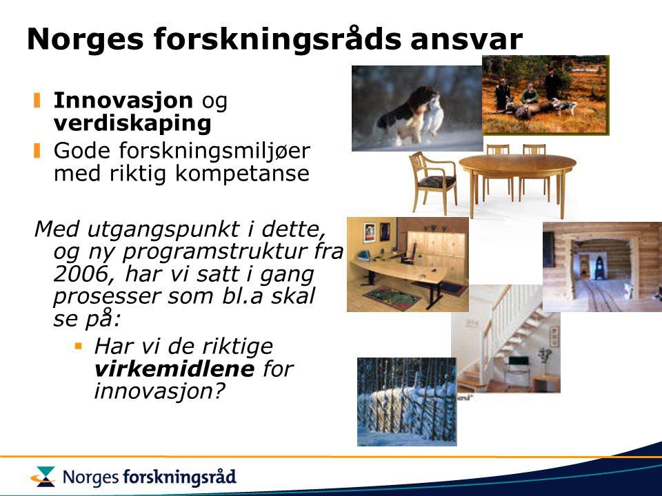 Norges forskningsråds ansvar Innovasjon og verdiskaping Gode forskningsmiljøer med riktig kompetanse Med utgangspunkt i dette, og ny programstruktur fra 2006, har vi satt i gang prosesser som bl.a skal se på:  Har vi de riktige virkemidlene for innovasjon