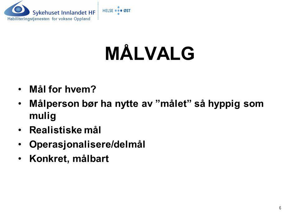 Habiliteringstjenesten for voksne Oppland 17 Eks.