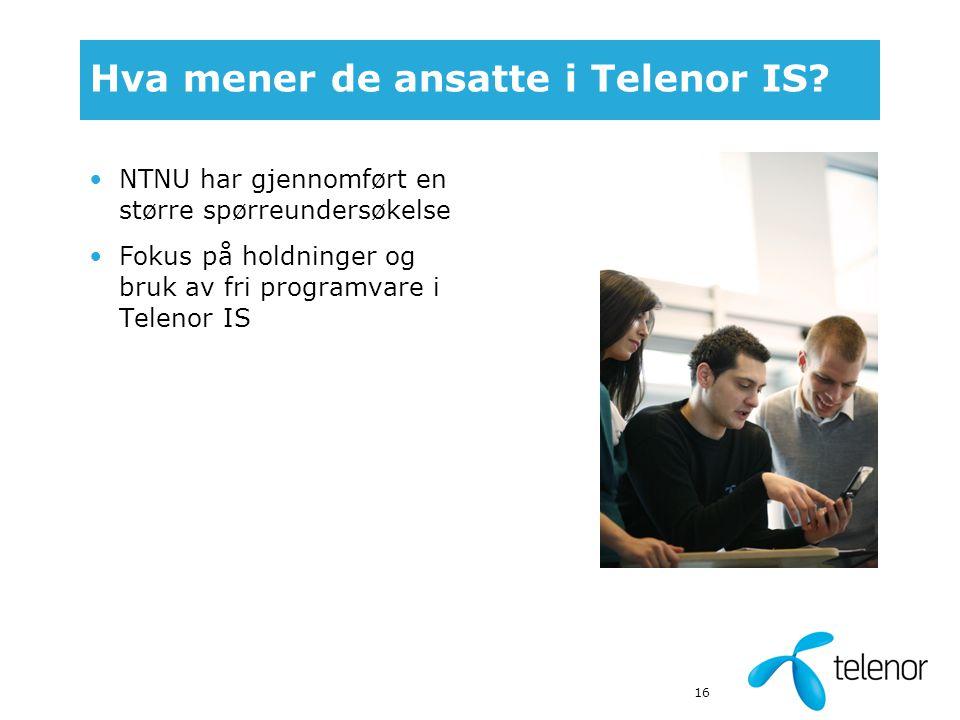 16 Hva mener de ansatte i Telenor IS.