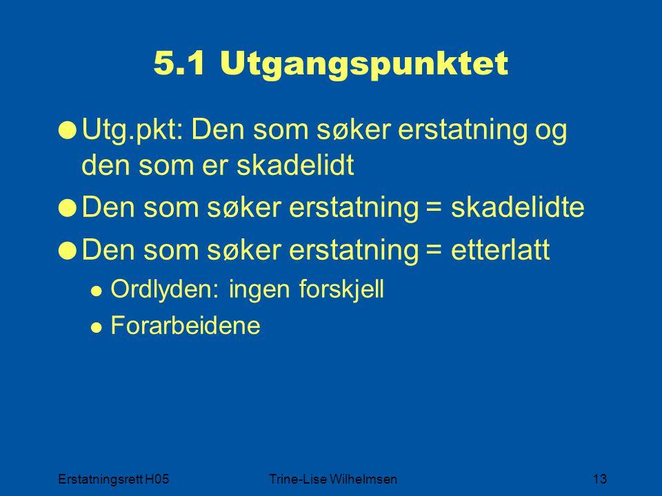 Erstatningsrett H05Trine-Lise Wilhelmsen13 5.1 Utgangspunktet  Utg.pkt: Den som søker erstatning og den som er skadelidt  Den som søker erstatning =