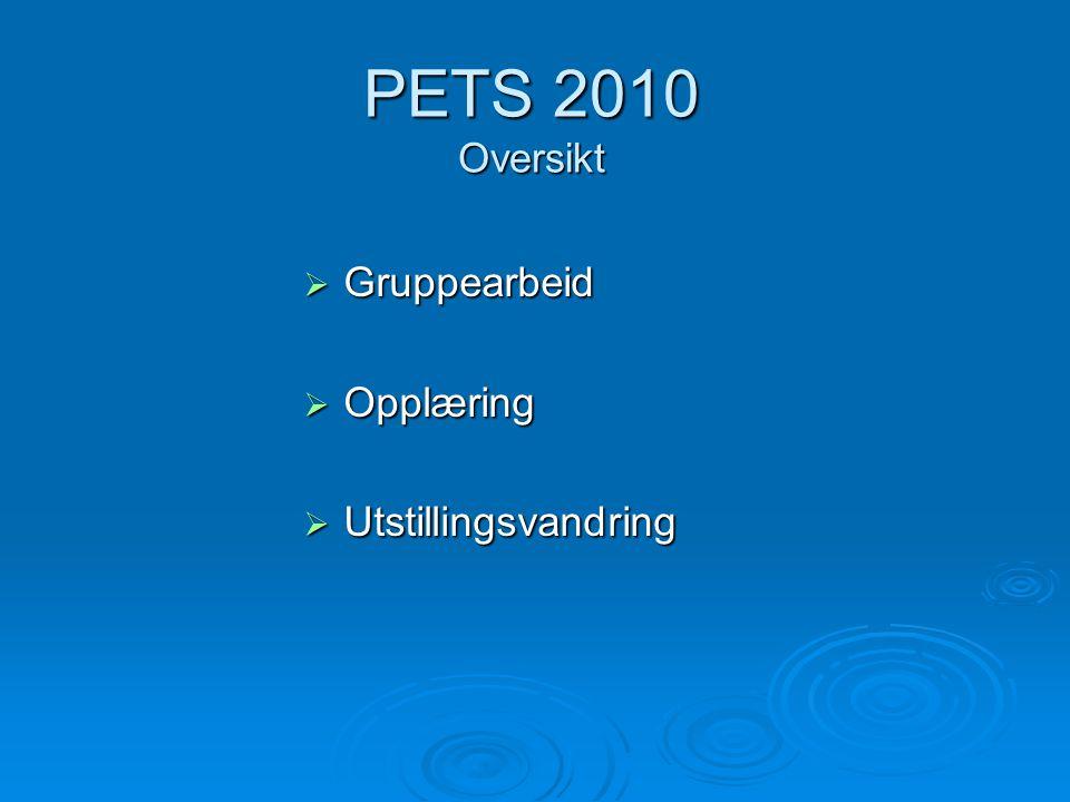 PETS 2010 Oversikt  Gruppearbeid  Opplæring  Utstillingsvandring