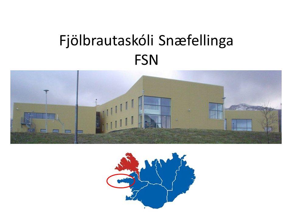 FSN Pedagogiske metoder fokuser på(learning by doing) og (problem- based learning.