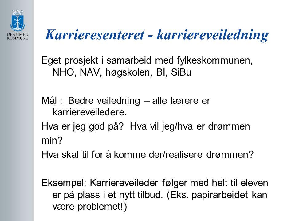 Karrieresenteret - karriereveiledning Eget prosjekt i samarbeid med fylkeskommunen, NHO, NAV, høgskolen, BI, SiBu Mål : Bedre veiledning – alle lærere er karriereveiledere.