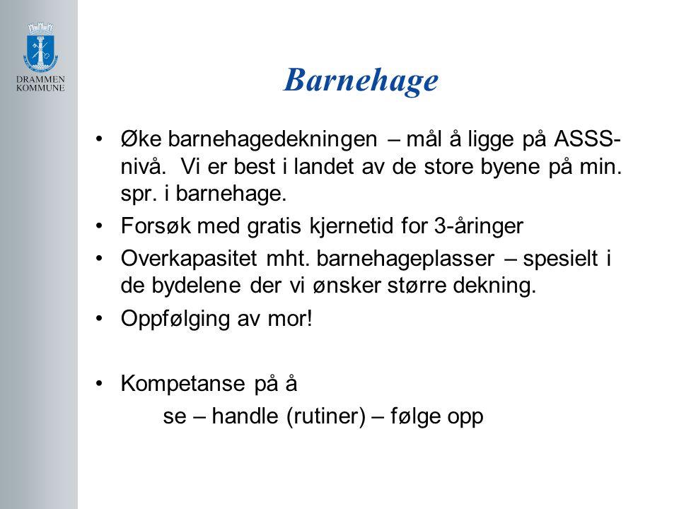 Visjonsprosjektet Visjon: Drammensskolen, Norges beste skole.