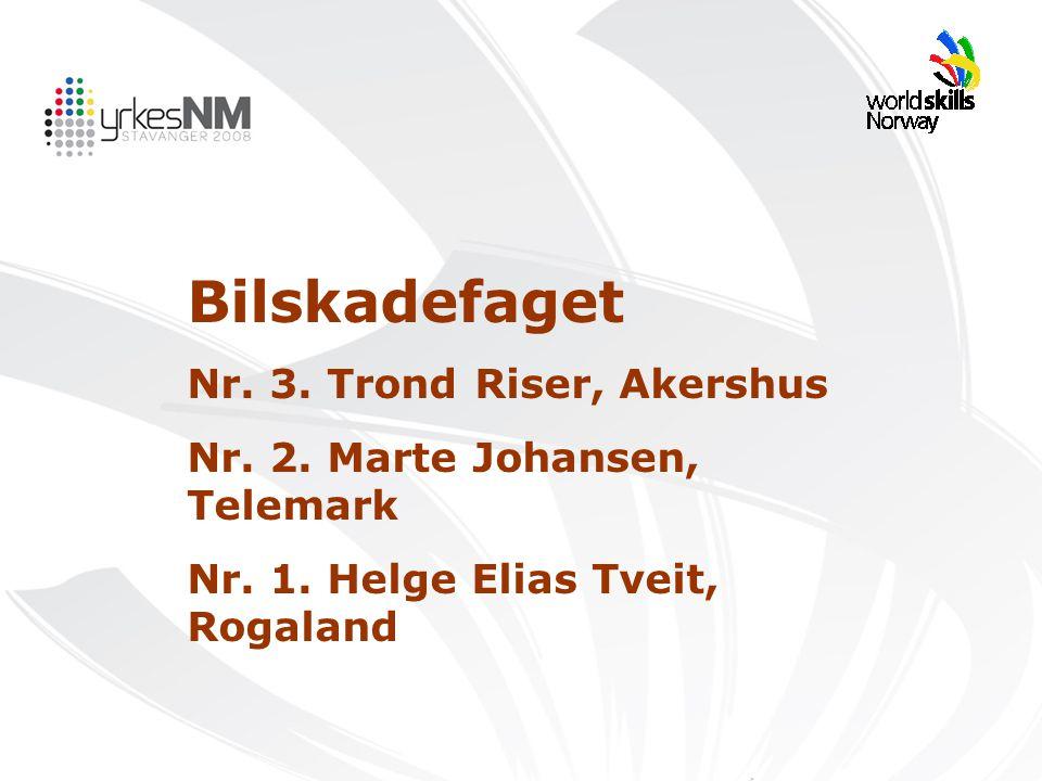 Bilskadefaget Nr. 3. Trond Riser, Akershus Nr. 2. Marte Johansen, Telemark Nr. 1. Helge Elias Tveit, Rogaland