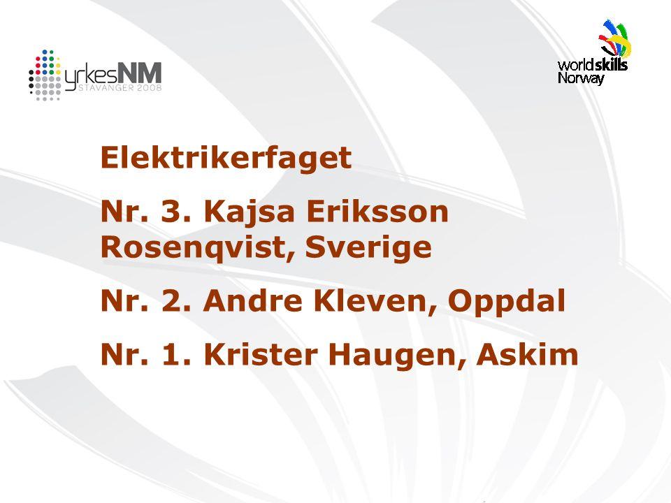 Elektrikerfaget Nr. 3. Kajsa Eriksson Rosenqvist, Sverige Nr. 2. Andre Kleven, Oppdal Nr. 1. Krister Haugen, Askim