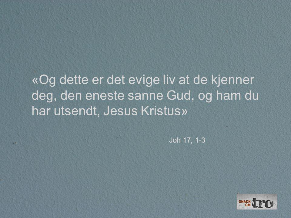«Og dette er det evige liv at de kjenner deg, den eneste sanne Gud, og ham du har utsendt, Jesus Kristus» Joh 17, 1-3