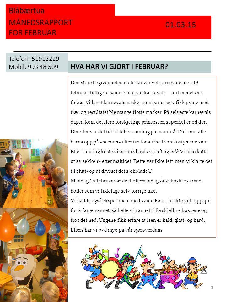 Blåbærtua MÅNEDSRAPPORT FOR FEBRUAR HVA HAR VI GJORT I FEBRUAR? 01.03.15 Telefon: 51913229 Mobil: 993 48 509 1 Den store begivenheten i februar var ve
