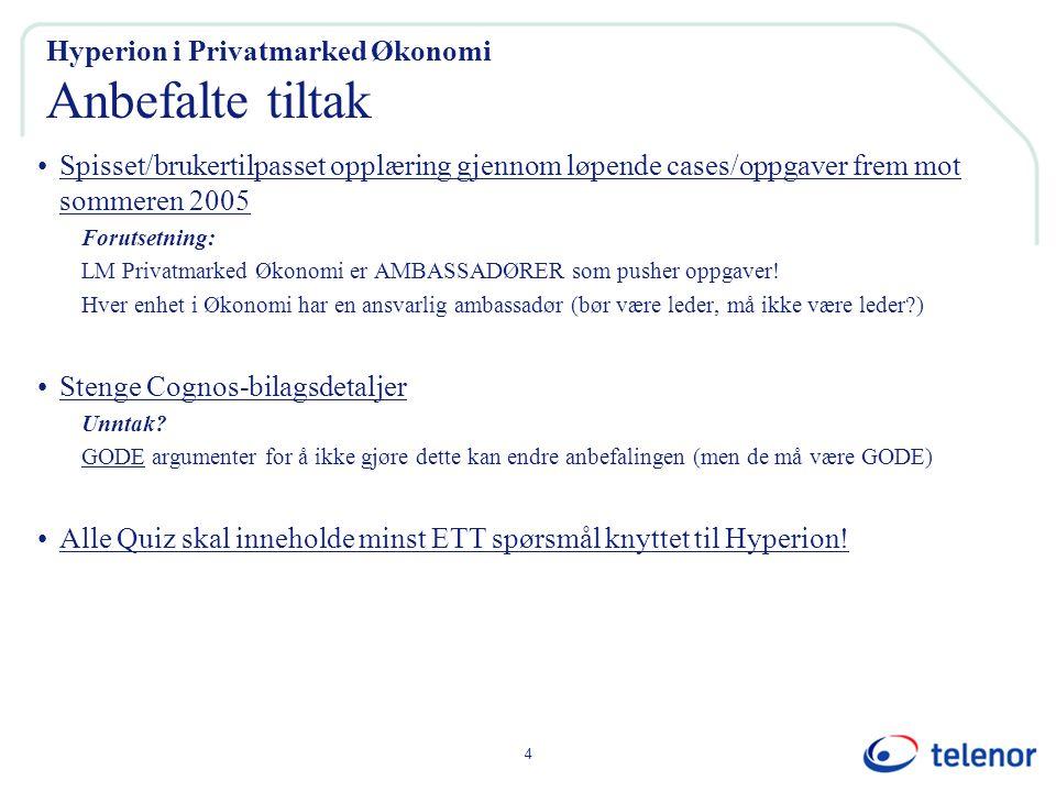 4 Hyperion i Privatmarked Økonomi Anbefalte tiltak Spisset/brukertilpasset opplæring gjennom løpende cases/oppgaver frem mot sommeren 2005 Forutsetning: LM Privatmarked Økonomi er AMBASSADØRER som pusher oppgaver.
