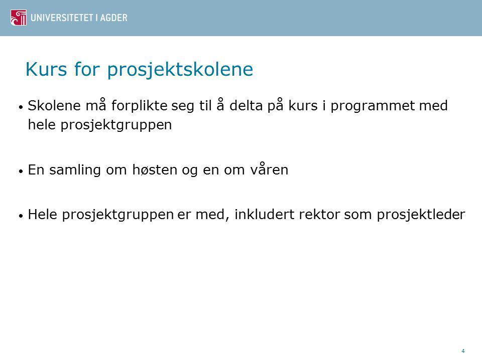 Hafslund ungdomsskole (8-10) Medietek(st) Bygge opp kompetanse innen multimedia og digitale ressurser hos elever og lærere Øke elevenes kunnskap om sammensatte tekster 15