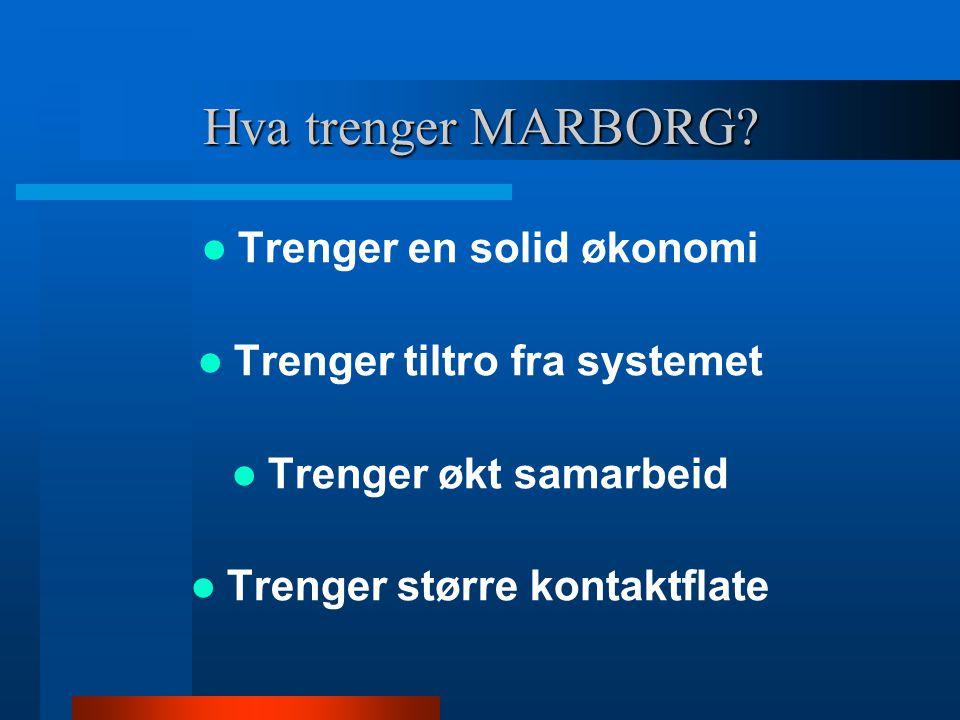 Hva trenger MARBORG? Trenger en solid økonomi Trenger tiltro fra systemet Trenger økt samarbeid Trenger større kontaktflate