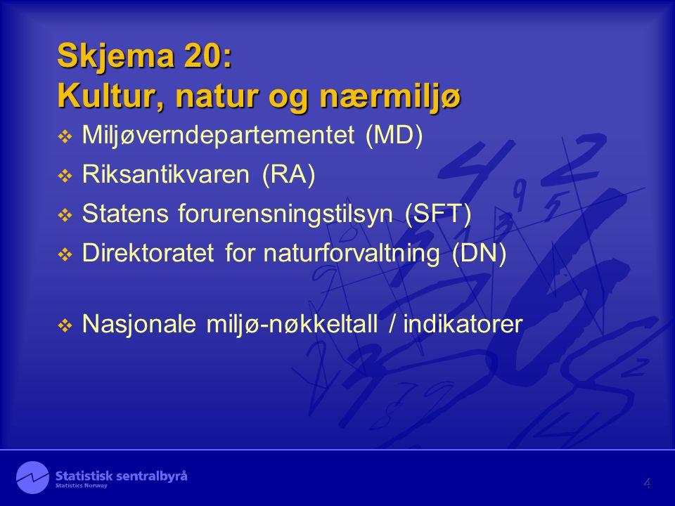 4 Skjema 20: Kultur, natur og nærmiljø  Miljøverndepartementet (MD)  Riksantikvaren (RA)  Statens forurensningstilsyn (SFT)  Direktoratet for naturforvaltning (DN)  Nasjonale miljø-nøkkeltall / indikatorer