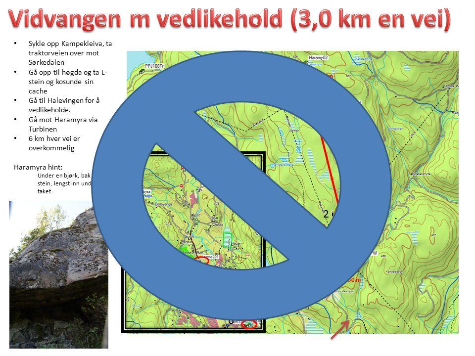 Sykle opp Kampekleiva, ta traktorveien over mot Sørkedalen Gå opp til høgda og ta L- stein og kosunde sin cache Gå til Halevingen for å vedlikeholde.