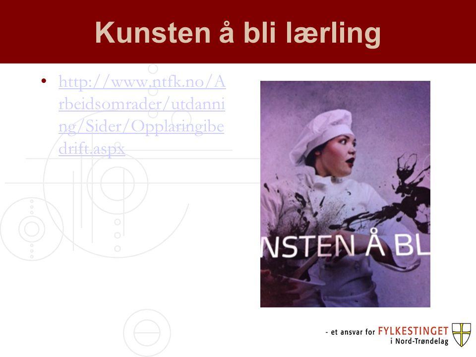 Kunsten å bli lærling http://www.ntfk.no/A rbeidsomrader/utdanni ng/Sider/Opplaringibe drift.aspxhttp://www.ntfk.no/A rbeidsomrader/utdanni ng/Sider/O