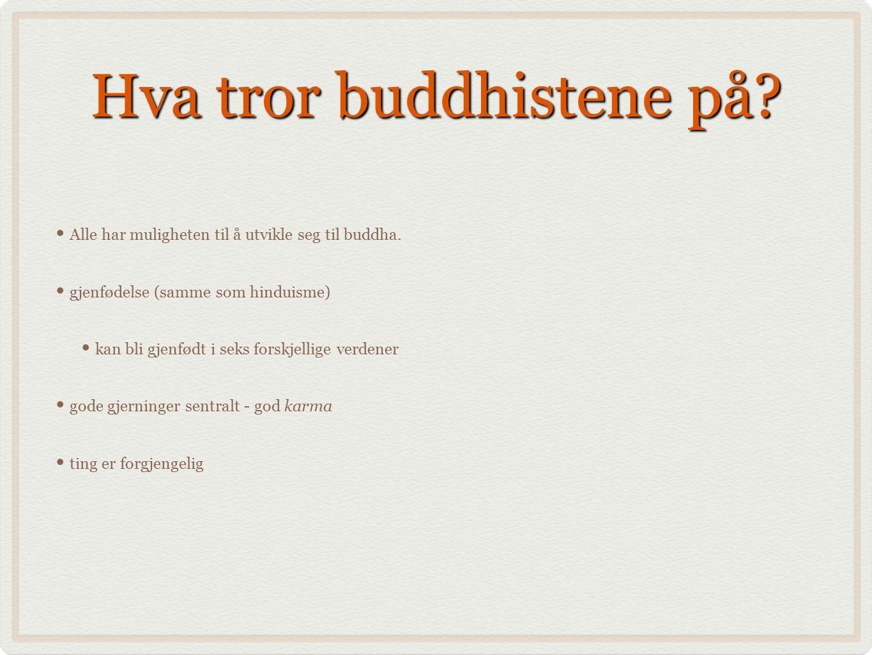 Hva tror buddhistene på? Alle har muligheten til å utvikle seg til buddha. gjenfødelse (samme som hinduisme) kan bli gjenfødt i seks forskjellige verd