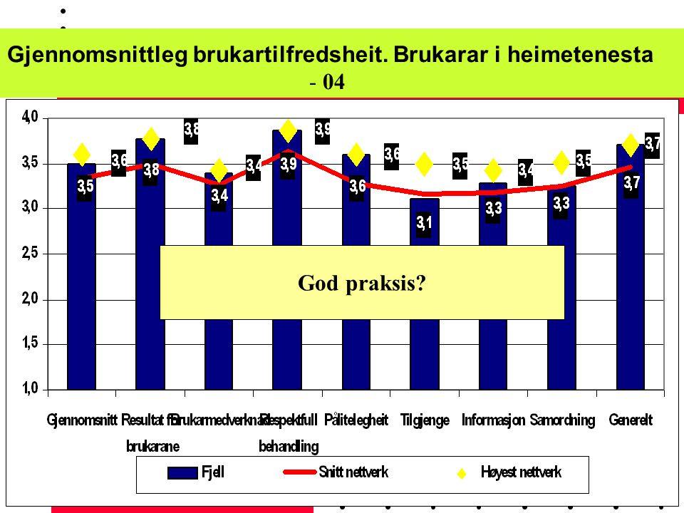 Effektiviseringsnettverk - Oslo 09.12.04 Fjell -02