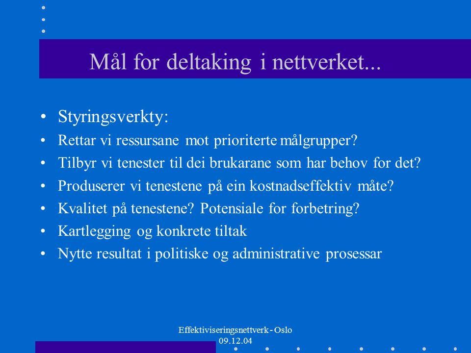 Effektiviseringsnettverk - Oslo 09.12.04