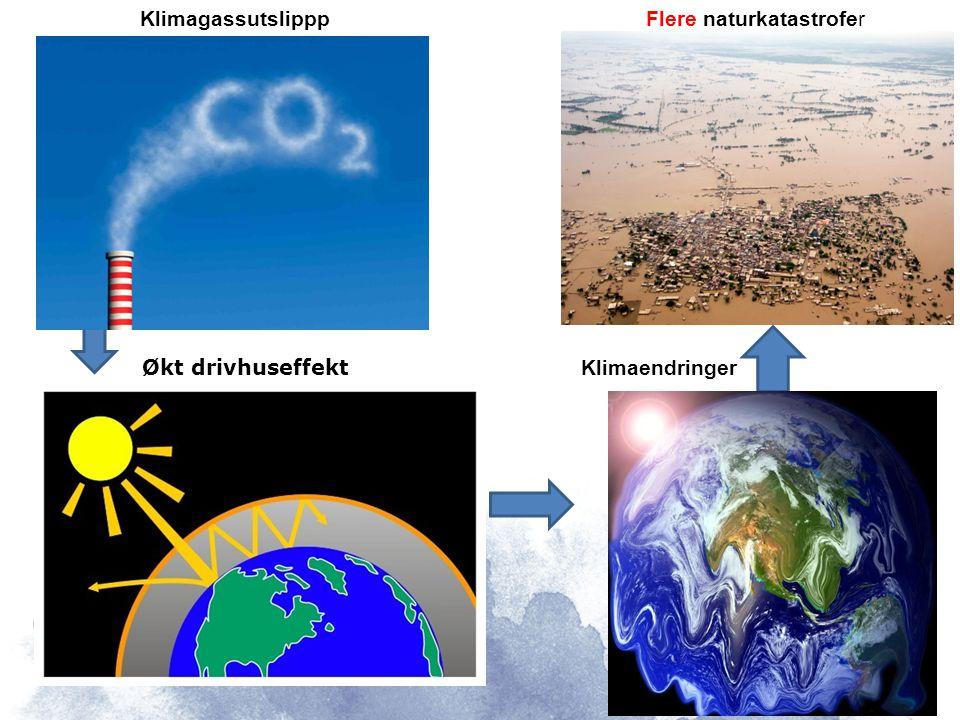 Klimagassutslippp Økt drivhuseffekt Klimaendringer Flere naturkatastrofer