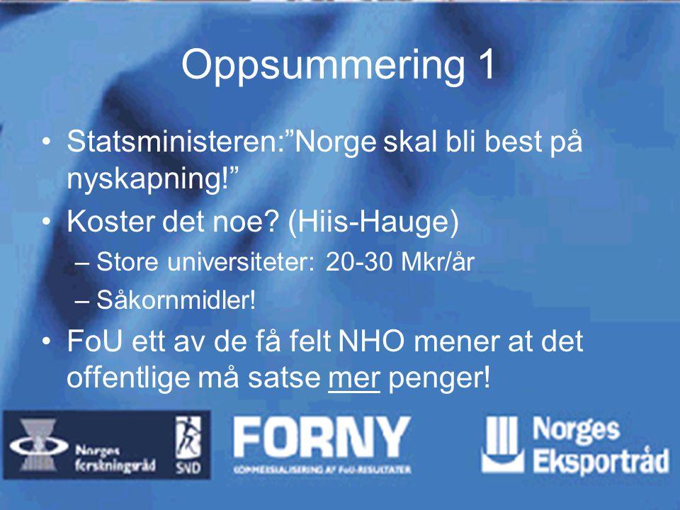 """Oppsummering 1 Statsministeren:""""Norge skal bli best på nyskapning!"""" Koster det noe? (Hiis-Hauge) –Store universiteter: 20-30 Mkr/år –Såkornmidler! FoU"""