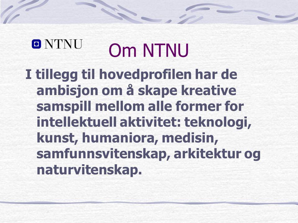 Om NTNU I tillegg til hovedprofilen har de ambisjon om å skape kreative samspill mellom alle former for intellektuell aktivitet: teknologi, kunst, humaniora, medisin, samfunnsvitenskap, arkitektur og naturvitenskap.