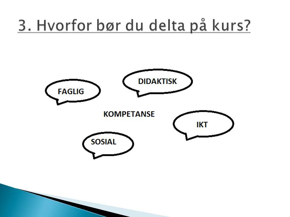 -etterutdanningstilbud administrert av Europarådet -knytter tema innenfor menneskerettigheter, demokrati, toleranse, rettsstaten og fredelig konfliktløsning - Converging competences in action - Estland/Latvia 2011