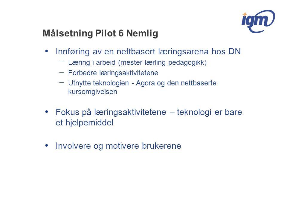 Målsetning Pilot 6 Nemlig Innføring av en nettbasert læringsarena hos DN − Læring i arbeid (mester-lærling pedagogikk) − Forbedre læringsaktivitetene − Utnytte teknologien - Agora og den nettbaserte kursomgivelsen Fokus på læringsaktivitetene – teknologi er bare et hjelpemiddel Involvere og motivere brukerene