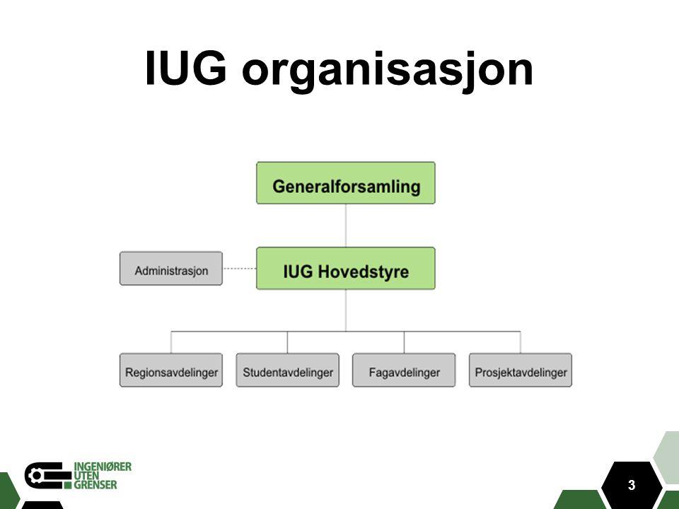3 IUG organisasjon