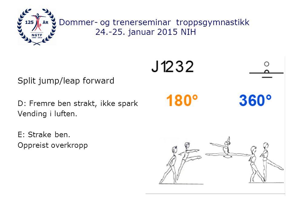 Dommer- og trenerseminar troppsgymnastikk 24.-25.januar 2015 NIH Scissors leap D: Strake ben.