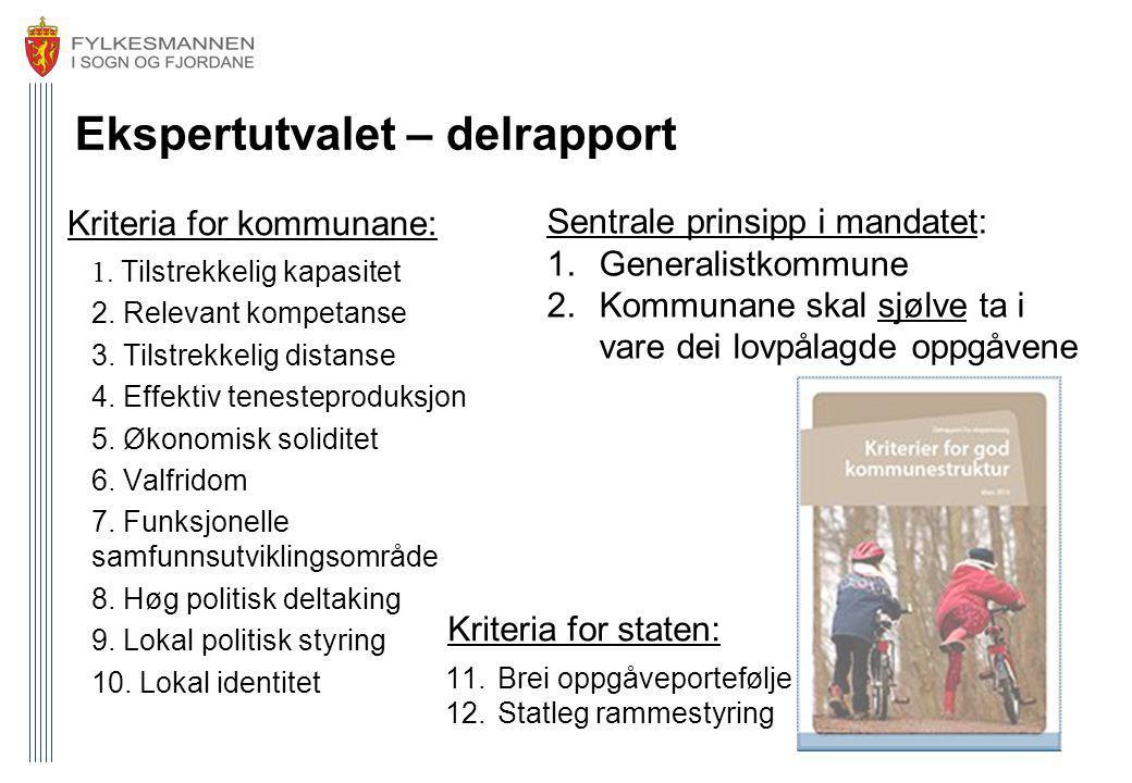 Ekspertutvalet – delrapport Kriteria for kommunane: 1. Tilstrekkelig kapasitet 2. Relevant kompetanse 3. Tilstrekkelig distanse 4. Effektiv tenestepro