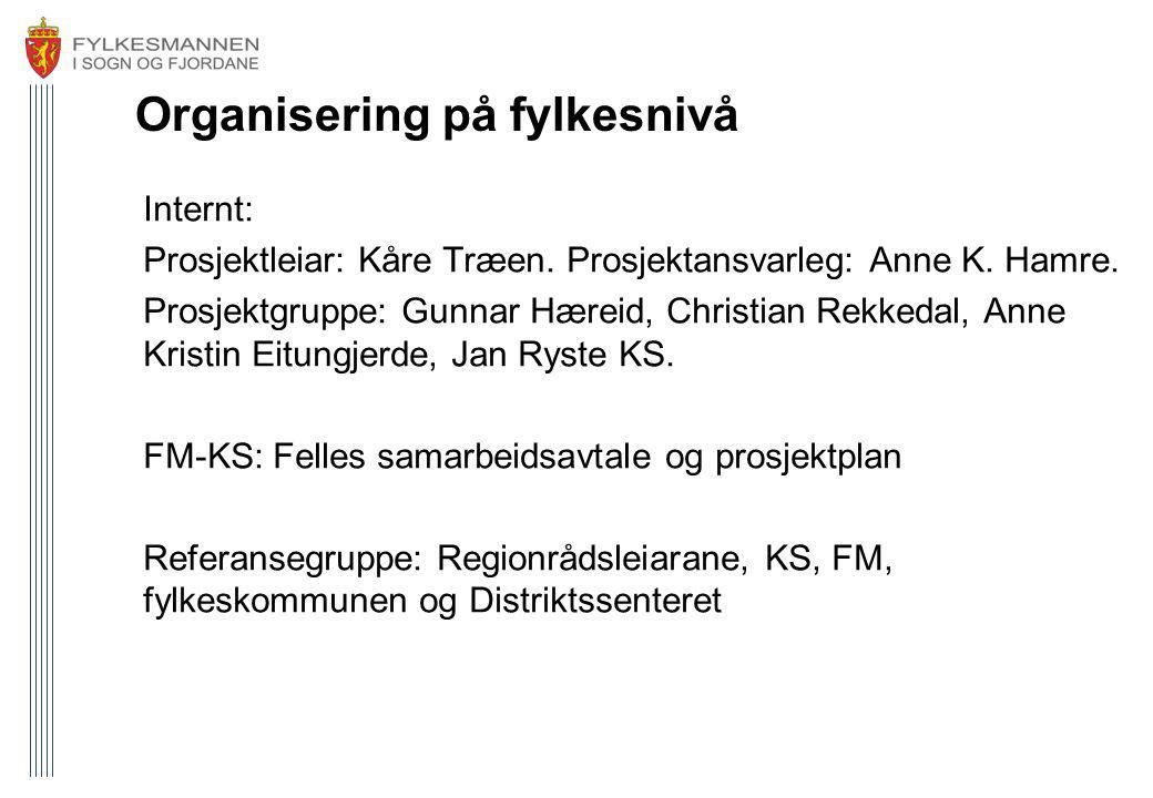 Organisering på fylkesnivå Internt: Prosjektleiar: Kåre Træen. Prosjektansvarleg: Anne K. Hamre. Prosjektgruppe: Gunnar Hæreid, Christian Rekkedal, An