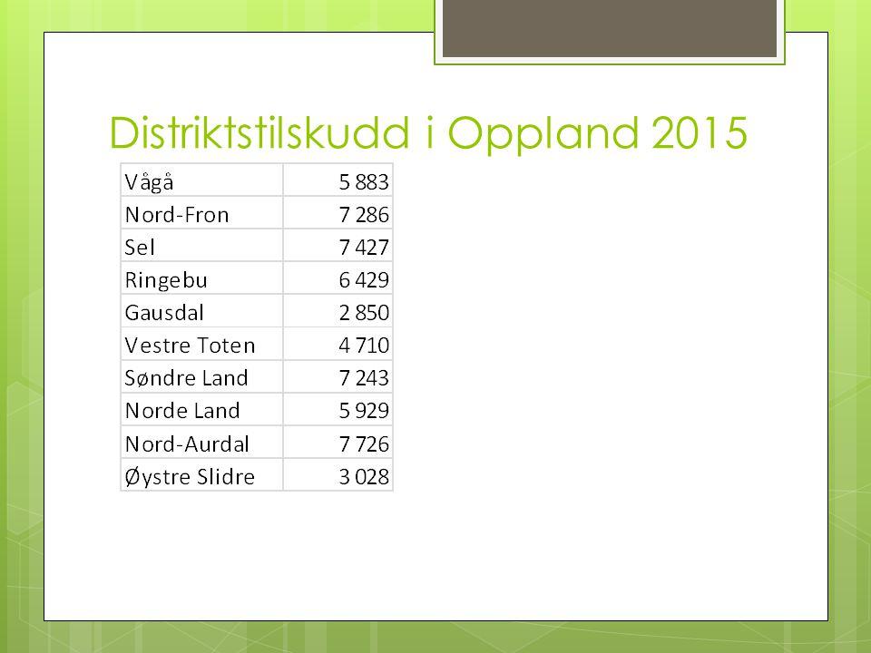 Distriktstilskudd i Oppland 2015