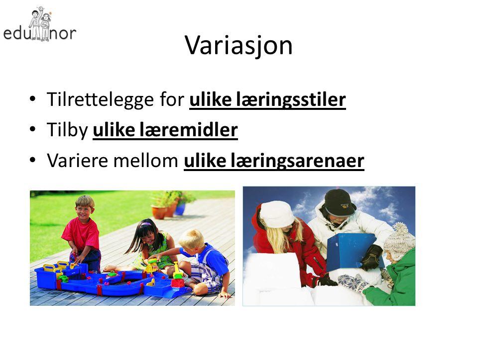 Variasjon Tilrettelegge for ulike læringsstiler Tilby ulike læremidler Variere mellom ulike læringsarenaer