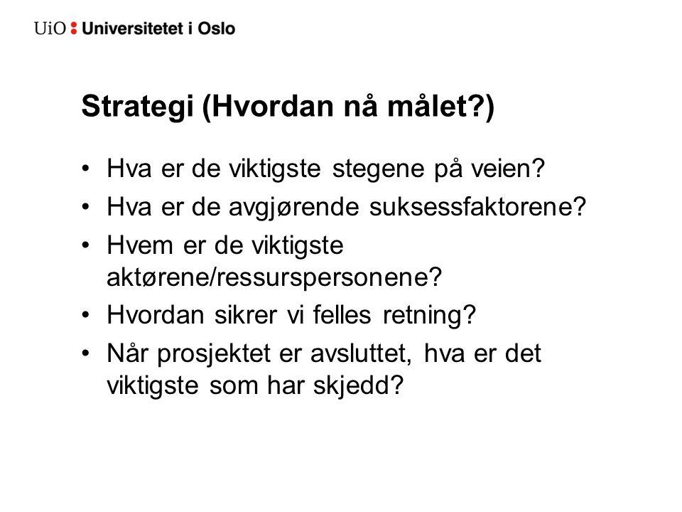 Strategi (Hvordan nå målet?) Hva er de viktigste stegene på veien? Hva er de avgjørende suksessfaktorene? Hvem er de viktigste aktørene/ressurspersone