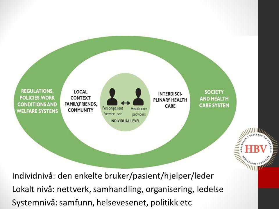 Individnivå: den enkelte bruker/pasient/hjelper/leder Lokalt nivå: nettverk, samhandling, organisering, ledelse Systemnivå: samfunn, helsevesenet, pol