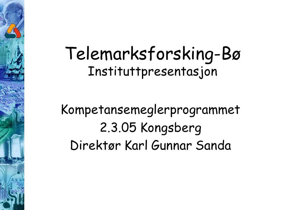 Telemarksforsking-Bø Kort om virksomheten Regionalt forskingsinstitutt – Samfunnsfaglig fokus Lokalisert i Bø i Telemark - Etablert i 1988 Organisert som en næringsdrivende stiftelse 25 ansatte/20 årsverk Omsatte for 14 mill kr i 2004 Knyttet til NFR og mottar grunnbevilgning (7%) Har for tiden 2 strategiske instituttprogram Inntektene ellers kommer etter prosjektanbud Jobber primært nasjonalt, men også lokalt/regionalt, og internasjonalt